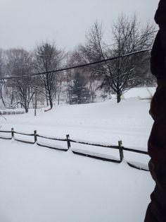 "Joni Tarrance of Waynesboro, VA says ""This is looking out my back door at 7:51 AM, Waynesboro VA."" #WHSVsnow"