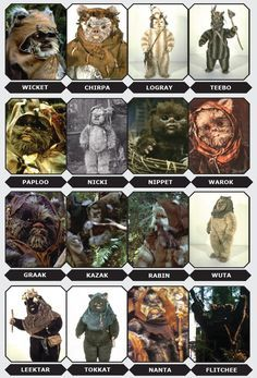 Get to know the Ewoks from Return of the Jedi, Caravan of Courage, and other Star Wars stories. Star Wars Film, Theme Star Wars, Star Wars Party, Star Trek, Star Wars Pictures, Star Wars Images, Ewok Costume, Cuadros Star Wars, Star Wars Personajes