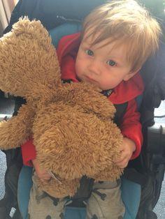 Freddie bear