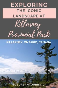 The famous white pines at Killarney Provincial Park are one of the key draws for visitors to this amazing natural park, north of Toronto. Ontario Camping, Ontario Travel, Ontario Provincial Parks, Camping Images, Ontario Parks, Alberta Travel, Algonquin Park, Parks Canada, Natural Park