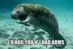 I'd hug you if I had arms