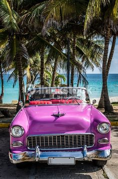 Pink american classic car parked on the beach in Cuba. Stockfoto: Rosa amerikanischer klassisches Auto, das am Strand in Kuba geparkt wird Muscle Cars Vintage, Vintage Cars, Antique Cars, Cuban Cars, Trinidad Und Tobago, Puerto Rico, Pink Cadillac, American Classic Cars, Camper Renovation