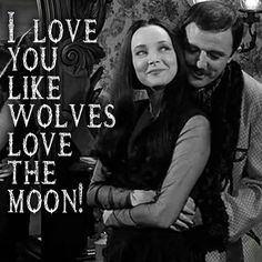 The Addams Family ~ I love you like wolves love the moon! Adams Family Quotes, The Addams Family 1964, Morticia And Gomez Addams, Dark Love, Cultura General, Wolf Love, I Love You, My Love, Cinema