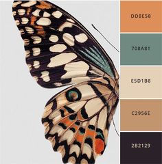 flight of Fancy butterfly color palette Neutral warm tones accented with muted jewel tones. palette boho Brand Better: 12 modern color palettes to steal — Brand Spanking You Modern Color Palette, Colour Pallete, Modern Colors, Colour Schemes, Warm Color Palettes, Color Trends, Adobe Color Palette, Interior Design Color Schemes, Spring Color Palette