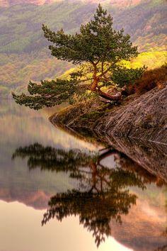 Loch Lomond, Scotland. I wanna go there and sing Loch Lomond.