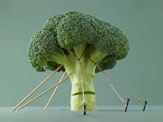 Broccoli is a nutritional powerhouse full of vitamins, minerals, fiber and antioxidants. Here are the top 14 health benefits of broccoli. Coconut Milk Nutrition, Pasta Nutrition, Broccoli Nutrition, Nutrition Plans, Healthy Nutrition, Nutrition Tips, Healthy Life, Nutrition Month, Losing Weight