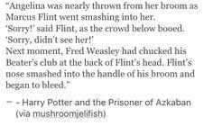 Angelina Johnson, Harry Potter, hp, Fred Weasley