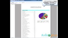 Focus24 - La guida al controllo della strategia di vendita - Report