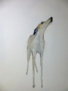 dog art by Sally Muir Animal Paintings, Animal Drawings, Art Drawings, Greyhound Art, Greyhound Tattoo, Dog Artist, Dog Illustration, Fauna, Dog Portraits