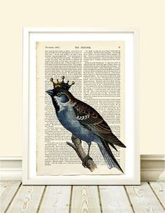 Poster Bird Crown - Hey You