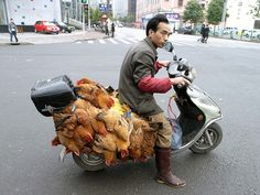man carrying chickens people are awesome http://ift.tt/2oEwTHl