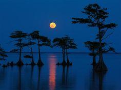 ブルームーンの美しい画像10選 – 10 beautiful photos of Blue Moon - | A!@attrip