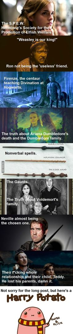 Things that shouldn't have been left out from the movie.Comment if you think even Peeves should've been there .