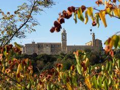 #Castelfidardo