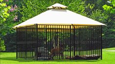 Dog Kennel To Build Care For Training Dogs Kennel