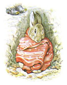 """'The Tale of Benjamin Bunny', 1904 -- Beatrix Potter. """"Peter was sitting by himself. He looked poorly, and was dressed in a red cotton pocket-handkerchief. Tales Of Beatrix Potter, Beatrix Potter Illustrations, Beatrice Potter, Peter Rabbit And Friends, Benjamin Bunny, Jolie Photo, Children's Book Illustration, Woodland Illustration, Fairy Tales"""