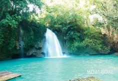 Moalboal, Cebu  #PHILIPPINES  #TRAVEL
