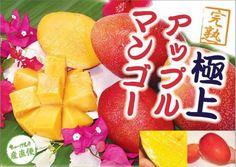 【特別御優待】本場(宮古島) 完熟アップルマンゴー