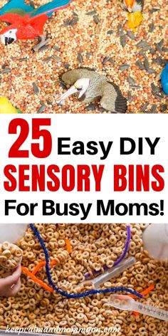 Are you looking for great sensory bin ideas for kids? Are you looking for sensory bins that are not only fun but easy and fast to assemble? Your child will love these 25 easy sensory bin ideas! Preschool Activities At Home, Sensory Activities Toddlers, Indoor Activities For Kids, Infant Activities, Summer Activities, Family Activities, Toddler Sensory Bins, Baby Sensory Play, Sensory Tubs