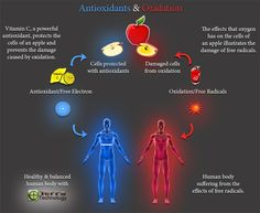 This image is a great demonstration of how Grounding, or Earthing, helps neutralize free radicals inside the human body. Much like an antioxidant, free electrons absorbed from the Earth act like lemon juice on an apple which slows down the oxidation process that turns the apple brown. Can you believe this is actually happening inside your body?