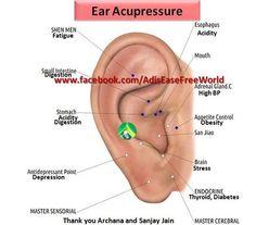 Ear Acupressure https://www.facebook.com/AdisEaseFreeWorld