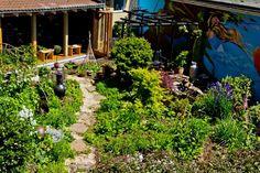 Summer garden at Hobbs Hairdressing