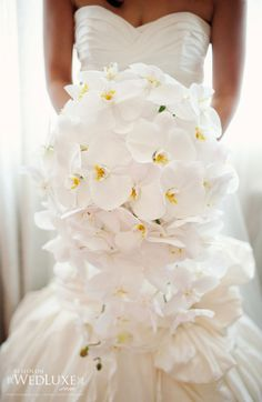 32 Best White Orchid Wedding Images Wedding White Orchids
