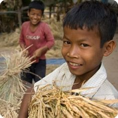 """This ancient grain is a staple for more than half the earth''s population. Many rice farmers have turned to chemical fertilizers to """"improve production."""" However, organic growing methods are less costly, healthier, more profitable and produce more yields. This gift helps train farmers to grow organically and lets them prosper. $75"""
