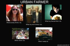 Urban farming- I am so doing this