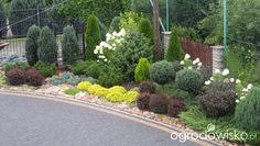 Metamorfozy ogrodowe - strona 34 - Forum ogrodnicze - Ogrodowisko