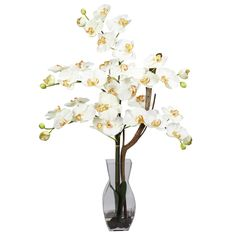 Phalaenopsis w/Vase Silk Flower Arrangement - Painting a mosaic of beauty and splendor, this remarkable floral arrangement adds a portrait of color to any room. With its beautiful and full flower petals, this will add a happy memory to whatever event it takes part in. Complete with a decorative vase filled with liquid illusion faux water, this elegant beauty will stay looking fresh for years to come. Number of Trunks: NA Number of Flowers: NA Number of Leaves: NA Pot Size: W: 4.25 in, H…