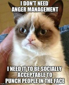 I don't need anger management I need it to be socially acceptable to punch people in the face.
