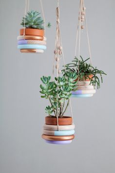 DIY wooden ring hanging planter