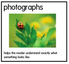We have been connecting creatures from Eric Carle's books to nonfiction texts. I can see a huge increase in the interest of nonfiction book. Nonfiction Text Features, Fiction And Nonfiction, Readers Workshop, Writing Workshop, Reading Strategies, Reading Comprehension, Teaching Genre, Science Notebooks, Guided Reading