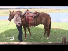 Want more videos from Julie Goodnight and Horse Master  Please visit