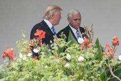 Trump jokes about Mike Pence's hatred of LGBT: 'he wants to hang them all!' He consistently mocks Pence's religiosity which cloaks Pence's own unsavory ambition.