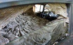 Mega-gigantické osie hniezdo v opustenom aute
