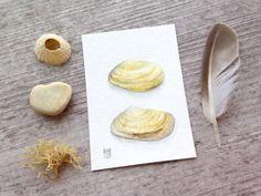 Original watercolor ACEO - Yellow seashells by Sandra Ovono