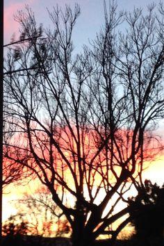 San Jose Sunset
