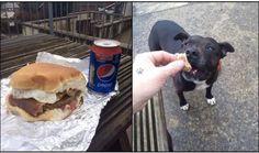 sharing a cheeseburger