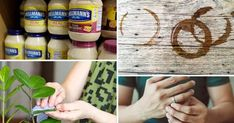 San Pellegrino, Beverages, Canning, Home Canning, Conservation