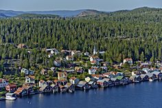 Ulvö hamn, Norra Ulvön Lappland, Cities, Beautiful Places, Nature, Outdoor, Pictures, Outdoors, Naturaleza, Outdoor Games