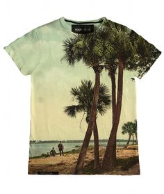 This encompasses so many of my favorites. Palm Trees, the beach, sunny days, T-shirts..... :D