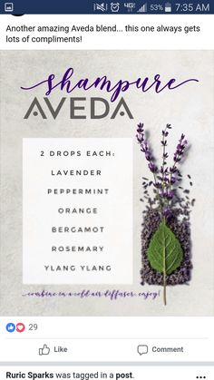 Aromatherapy is the easy practice of awakening your senses with natural oils. In fact, you have actually probably experienced the benefits of Aromatherapy without even realizing it! Essential Oil Diffuser Blends, Doterra Essential Oils, Young Living Essential Oils, Deodorant, Diffuser Recipes, Aromatherapy Oils, Back To Nature, Osho, Orange