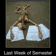 Or just the entire last semester!