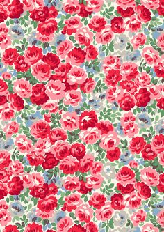 Bewmore Rose   A festive floral brimming with cheerful little roses that will look bright and beautiful all year round   Cath Kidston Christmas 2016  