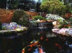 Koi Pond Design Ideas rock koi pond tropical garden waterfalls santa barbara Small Koi Pond Design Ideas Koi Pond Design Requires Both Artistic Talent And A Knowledge