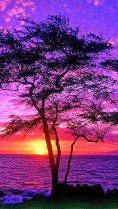 Sunset in Maui, Hawaii