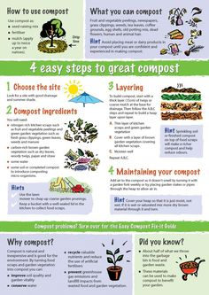 Composting is natural and inexpensive. It also reduces household waste dramatically.au covers the four easy steps to great compost. Garden Plants, Flowers Garden, Composting At Home, Worm Composting, Urban Composting, Garden Compost, Diy Compost Bin, How To Compost, Compost Tumbler