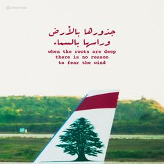 #lebanon #cedar #mea #plane #airport #sky #nature #quotes #tree #beirut…